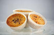 Free Three Muffins Royalty Free Stock Photos - 34158608