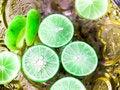 Free Lemonade Stock Images - 34161444