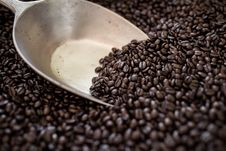 Free Coffee Beans Stock Photo - 34164960