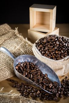 Free Black Roasted Coffee Beans Stock Images - 34181214