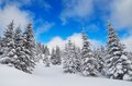 Free Winter View Royalty Free Stock Photo - 34194955