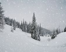 Free Snowstorm In The Mountains Royalty Free Stock Photography - 34194907