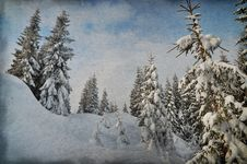 Free Winter In The Mountain Forest Royalty Free Stock Photos - 34194948