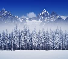 Free Winter Landscape With Forest Royalty Free Stock Photo - 34195175