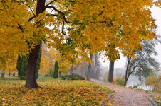 Free Autumn In The Park Stock Image - 34195181