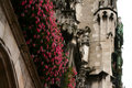 Free Flowers And Castle Stock Photos - 3424723