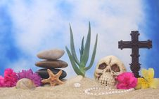 Free Still Life On Beach Stock Photo - 3422680