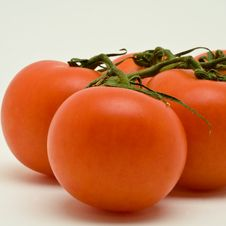 Free Vine Tomatoes Stock Photos - 3422713