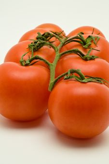 Free Vine Tomatoes Royalty Free Stock Photo - 3422765