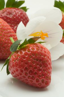 Free Decorated Strawberry Dessert Royalty Free Stock Photo - 3423125