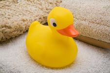 Free Yellow Rubber Duck Stock Images - 3423464