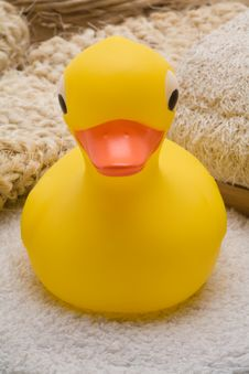 Free Yellow Rubber Duck Royalty Free Stock Photos - 3423518