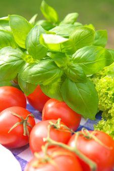Free Vegetarian Appetizer Royalty Free Stock Image - 3426076