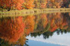 Free Autumn Foliage Reflected Stock Image - 3427091