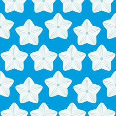 Free Seamless Pattern  (vector) Royalty Free Stock Photo - 3427185