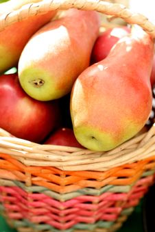 Free Ripe Fresh Pears In A Basket Royalty Free Stock Photo - 3427345