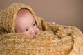 Free Newborn Baby Wrapped In  Light Brown Soft Fluffy Cloth Stock Photo - 34209960