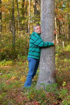 Free Tree Hugger Royalty Free Stock Images - 34202129