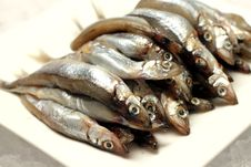 Free Uncooked Trunk Small Fish Stock Photo - 34206640