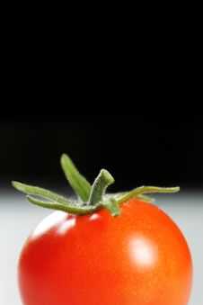 Free Tomato Stock Photography - 34206912