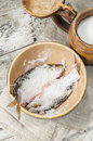 Free Two Roaches Fish In Ceramic Bowl With Salt. Stock Photos - 34256983