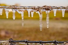 Free Frozen Icicles Stock Images - 34257694