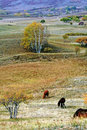 Free Dam Autumn In Inner Mongolia Royalty Free Stock Image - 34268166