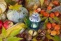 Free Thanksgiving, Autumn Border Royalty Free Stock Photography - 34279987