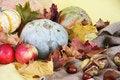 Free Autumn Background Royalty Free Stock Photos - 34280038