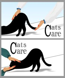 Free Cats Care Stock Images - 34281694