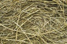Free Hay Stacked, Meadow, Christmas Background Stock Images - 34282404