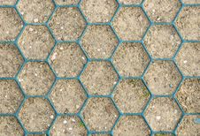 Free Honeycomb Pattern On Ground Royalty Free Stock Image - 34282966