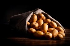 Selective Raw Potato In Linen Bag On Table Stock Photography