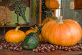 Free Autum Decoration Pumpkins Royalty Free Stock Images - 3431799