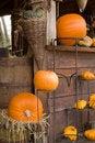 Free Autum Pumpkin Decoration Stock Photos - 3431873