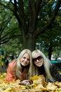Free Autumn Girls. Stock Photos - 3437593