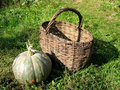 Free Brown Basket And Pumpkin Stock Image - 3439331