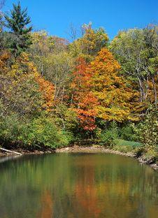 Free Autumn Lake Royalty Free Stock Photos - 3430318