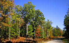 Free Autumn Landscape Stock Photos - 3431523