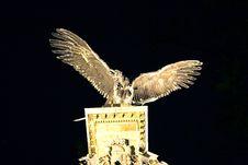 Stone Bird In Budapest Royalty Free Stock Photo