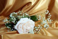 Free Luxury Stock Photo - 3433630
