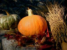 Free Pumpkins And Broom Royalty Free Stock Photography - 3436437