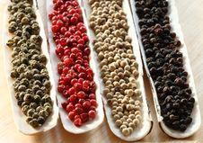 Peppercorns Spices Sea Shells