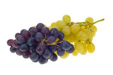 Free Fresh Grapes Royalty Free Stock Photography - 3439647