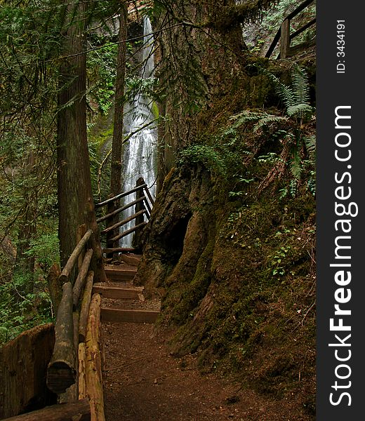 Falls, Olympic National Park