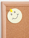 Free Cork Board Notes Royalty Free Stock Photo - 34309055