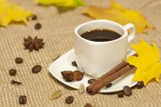 Free Autumn Cup Of Coffee Royalty Free Stock Photos - 34308158