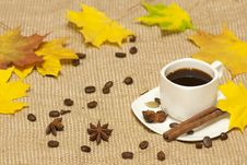 Free Autumn Cup Of Coffee Stock Image - 34308161