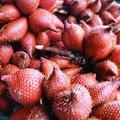 Free Zalacca Tropical Fruit Background Stock Photo - 34310300