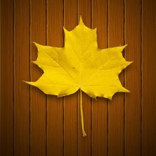 Free Vector Background. Leaf. Autumn. Royalty Free Stock Photos - 34321918